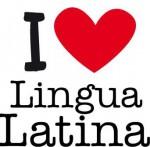 Latinosaink az országos döntőben