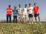 Országos mezei futóverseny
